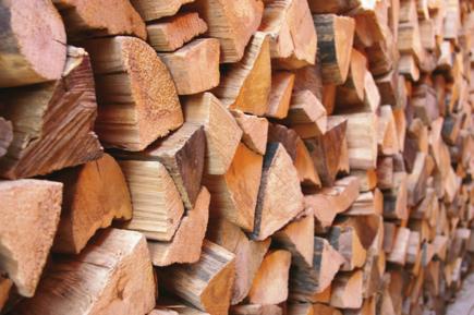 stipane dřevo
